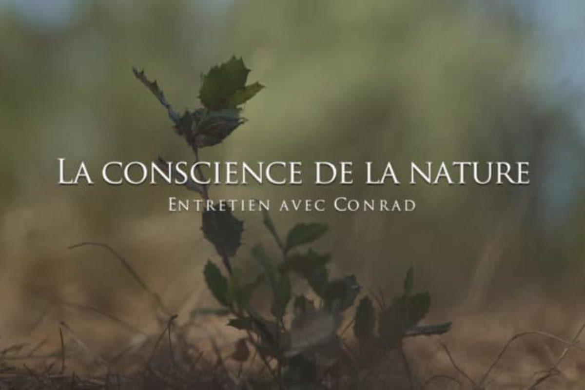 Conrad : La conscience de la nature